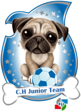 CH Junior Team 500x690.png
